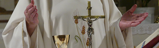 Msze święte w naszej parafii